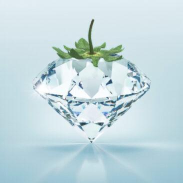 Un diamond en verre avec une calice de fraise en dessus sur un fond bleu claire. Visuel pour la campagne BGL BNP Paribas